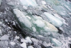 Methangasblasen steigen aus dem Nordpolarmeer auf
