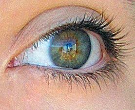 Augen grüne oder blaue Wie du
