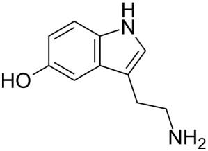 Serotonin spielt als Neurotransmitter im Zentralnervensystem und im Darmnervensystem eine wichtige Rolle.