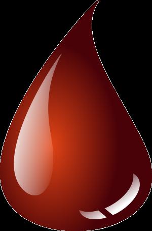 Blut mit einem Artgenossen zu teilen, ist für Vampirfledermäuse ein echtes Opfer.